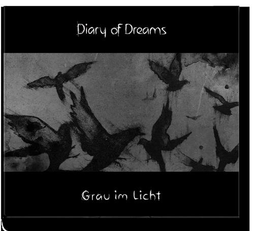 a0138_dod_grau_im_licht